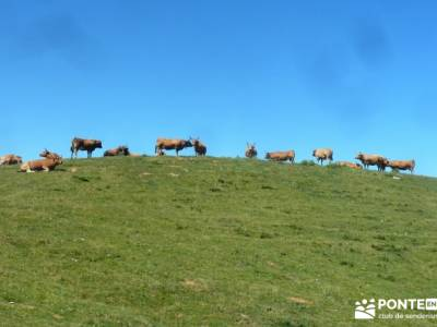 Somiedo, viaje Asturias; senderismo madrid singles viajes culturales españa viajes con actividades